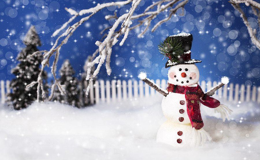 Hyvää joulua JiPS:iltä!